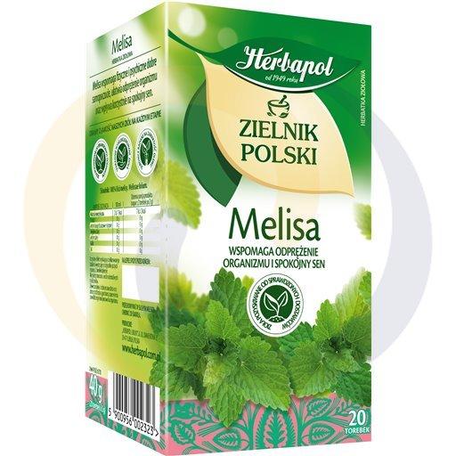 Herbapol Herbata Ziel.Polski melisa 20t*2,0g/12szt  kod:5900960000000