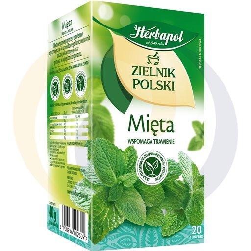 Herbapol Herbata Ziel.Polski mięta 20t*2,0g/12szt  kod:5900960000000